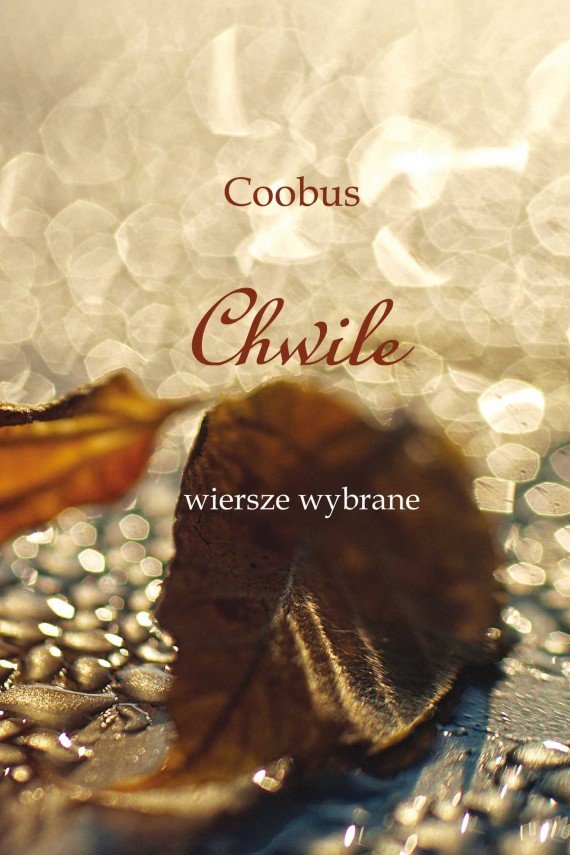 Chwile (ebook) –	TK Coobus