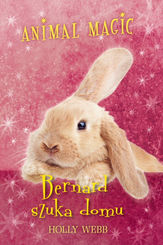 Animal magic. Bernard szuka domu (ebook) –	Holly Webb