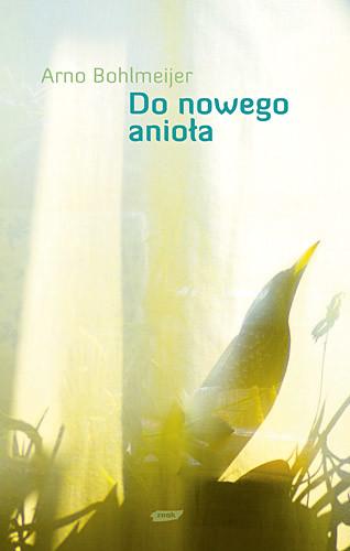 okładka Do nowego anioła, Książka | Bohlmeijer Arno