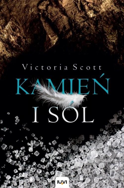 okładka Kamień i sól, Książka | Scott Victoria