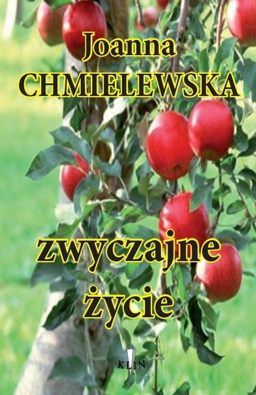 okładka Zwyczajne życie, Książka | Chmielewska Joanna