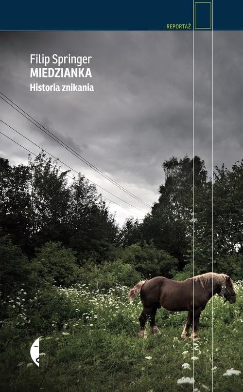 okładka Miedzianka. Historia znikania, Książka | Springer Filip