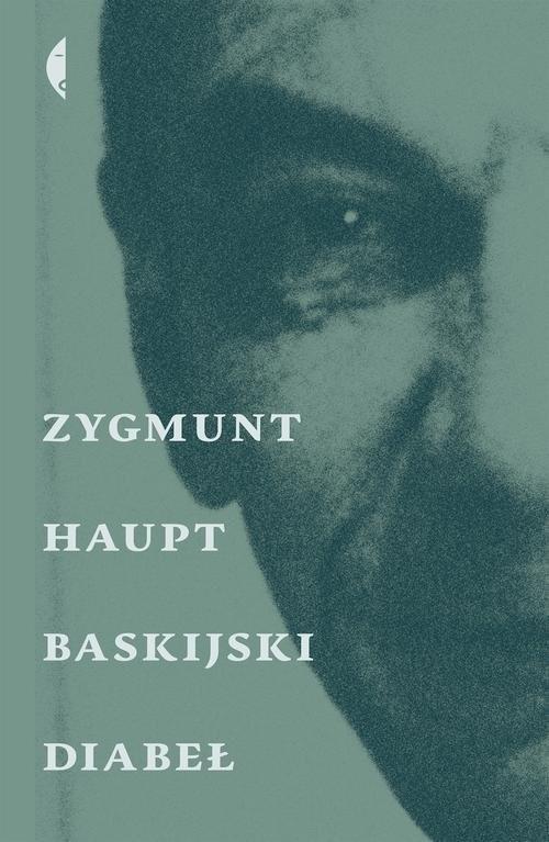 okładka Baskijski diabeł, Książka | Zygmunt Haupt