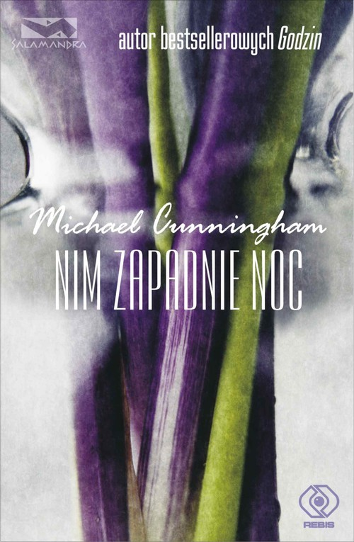 okładka Nim zapadnie noc, Książka | Cunningham Michael