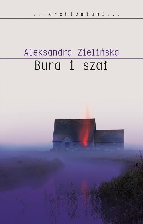 okładka Bura i szał, Książka | Aleksandra Zielińska