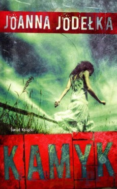 okładka Kamyk, Książka | Joanna Jodełka