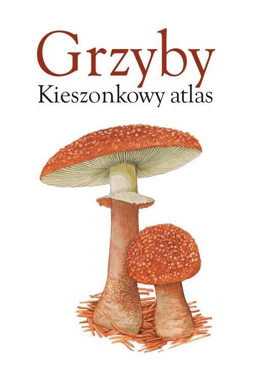 okładka Grzyby. Kieszonkowy atlas, Książka | Praca Zbiorowa