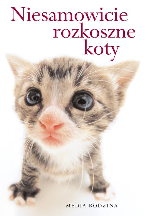 okładka Niesamowicie rozkoszne koty, Książka | Stuart Macfarlane, Linda Macfarlane