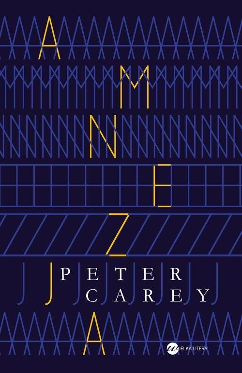 okładka Amnezja, Książka | Carey Peter