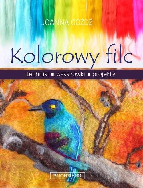 okładka Kolorowy filc, Książka | Góźdź Joanna
