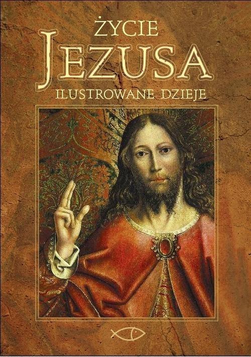 okładka Życie Jezusa. Ilustrowane dzieje, Książka | David John Meyers