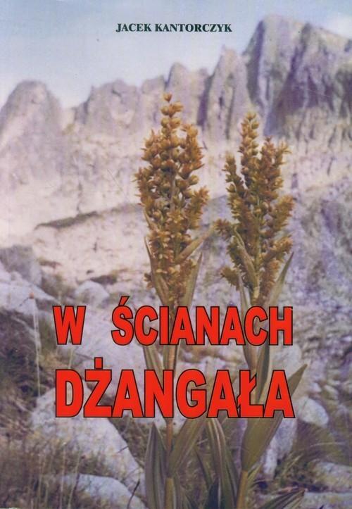 okładka W ścianach Dżangała, Książka   Kantorczyk Jacek