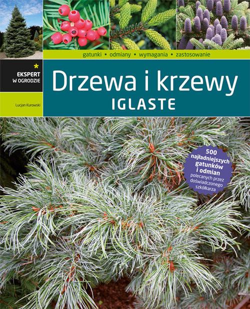 okładka Drzewa i krzewy iglaste, Książka | Kurowski Lucjan