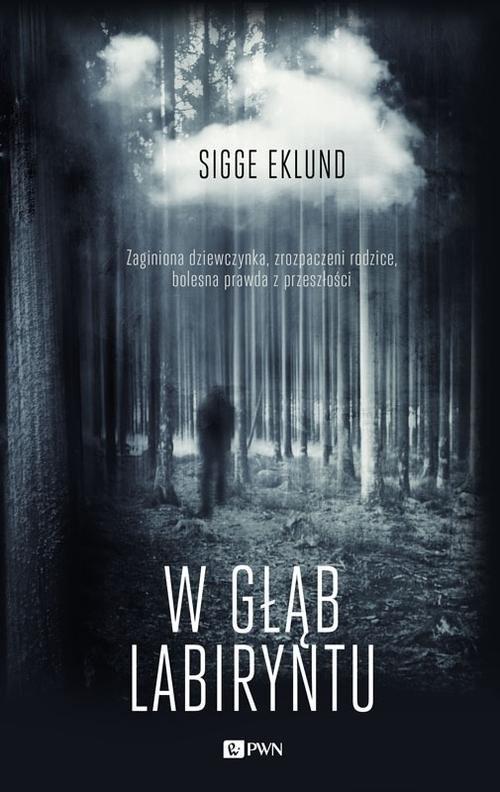 okładka W głąb labiryntu, Książka   Sigge  Eklund