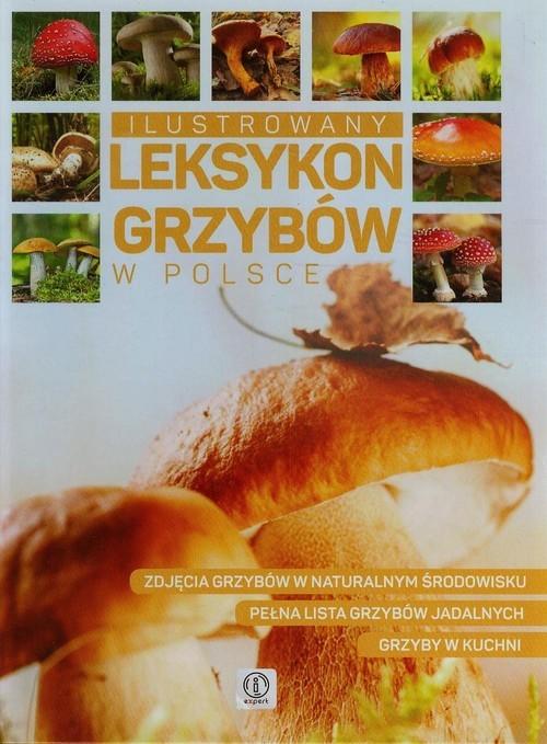 okładka Ilustrowany leksykon grzybów w Polsce, Książka | Wiesław Kamiński, Jolanta Bąk