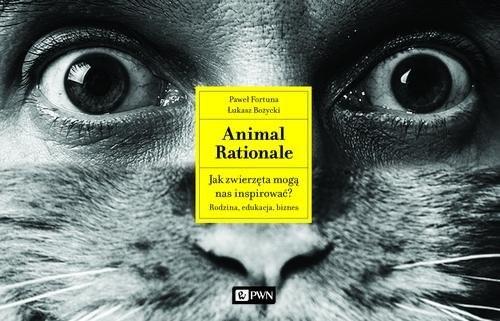 okładka Animal Rationale Jak zwierzęta mogą nas inspirować? Rodzina, edukacja, biznes, Książka | Paweł  Fortuna, Łukasz  Bożycki