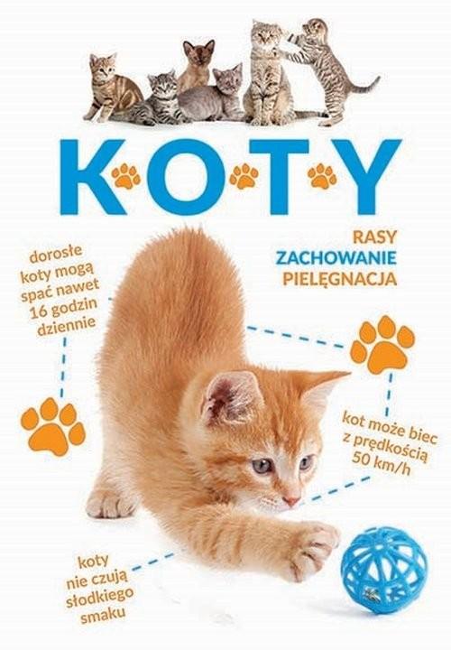 okładka Koty, Książka | Tittendrun-Jazienicka Barbara