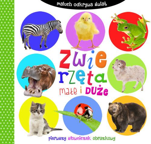 okładka Maluch odkrywa świat Zwierzęta małe i duże, Książka | zbiorowa praca