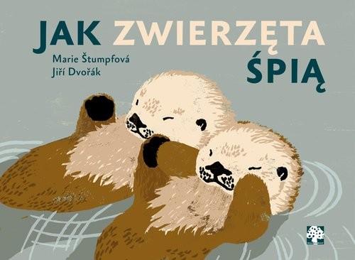 okładka Jak zwierzęta śpią?, Książka | Dvorak Jiri