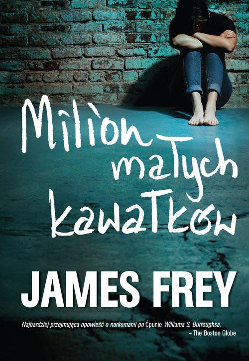 okładka Milion małych kawałków, Książka | Frey James