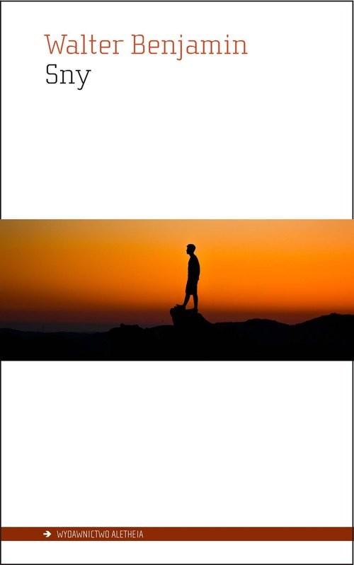 okładka Sny, Książka | Benjamin Walter