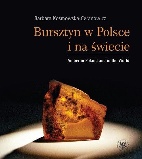 okładka Bursztyn w Polsce i na świecie Amber in Poland and in the World, Książka | Kosmowska-Ceranowicz Barbara