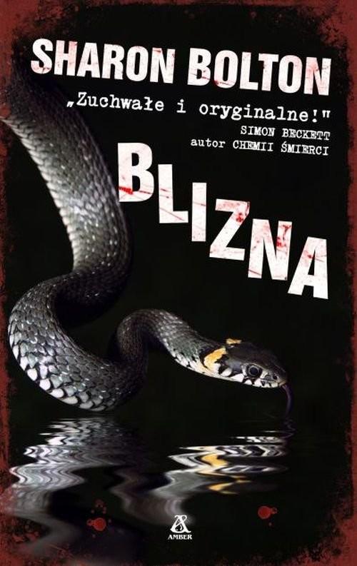 okładka Blizna, Książka | Sharon Bolton