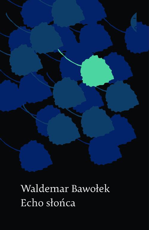 okładka Echo słońca, Książka | Waldemar  Bawołek
