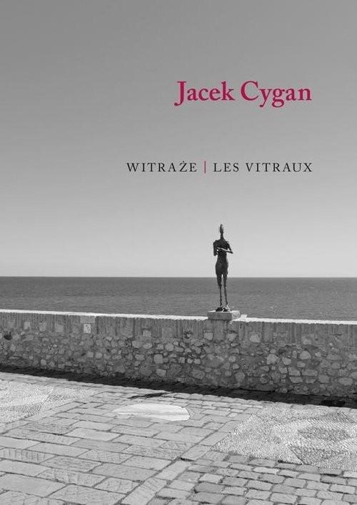 okładka Witraże Les vitrauxksiążka      Cygan Jacek