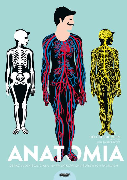 okładka Anatomia Obraz ludzkiego ciała na wyjątkowych ażurowych rycinach, Książka | Druvert Helene