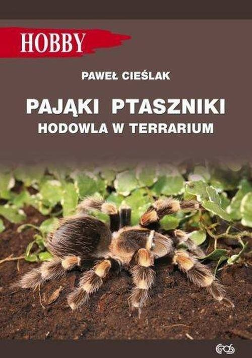 okładka Pająki ptaszniki w terrarium, Książka | Marcin Jan Gorazdowski