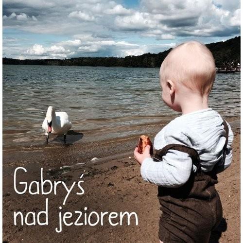 okładka Gabryś nad jeziorem, Książka   Praca Zbiorowa