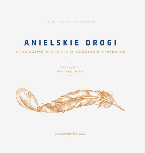 okładka Anielskie drogi Prawdziwe historie o gościach z niebios, Książka | Joan Wester Anderson