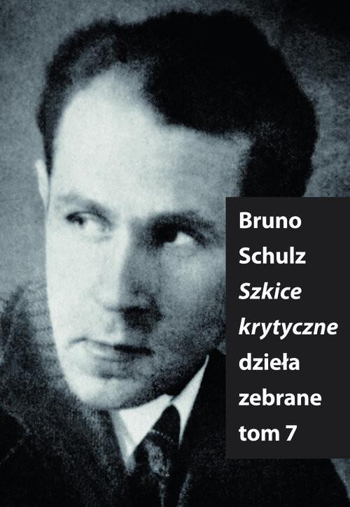 okładka Szkice Krytyczne, Książka | Bruno Schulz