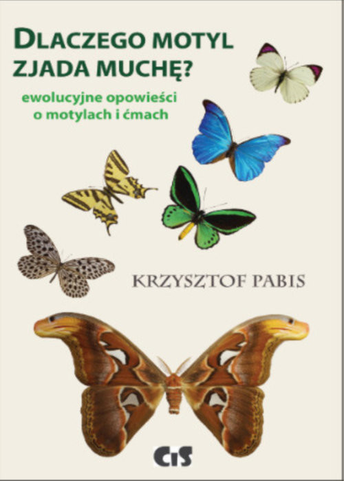 okładka Dlaczego motyl zjada muchę Ewolucyjne opowieści o motylach i ćmach, Książka | Krzysztof  Pabis