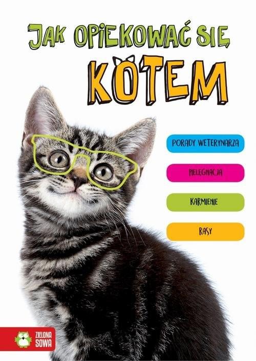 okładka Jak opiekować się kotem, Książka | Kłopotek Anna