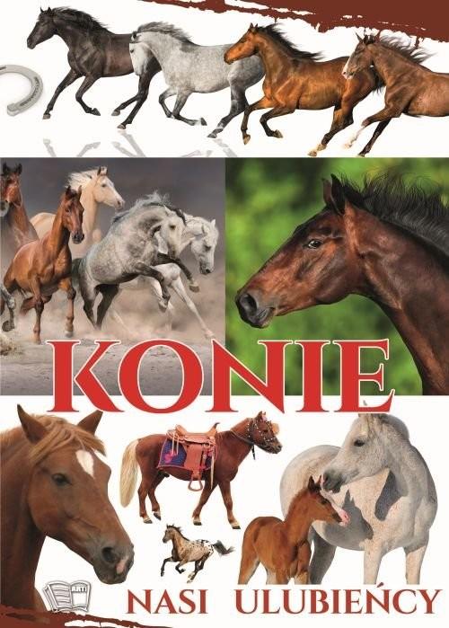 okładka Konie nasi ulubieńcy, Książka | Praca Zbiorowa