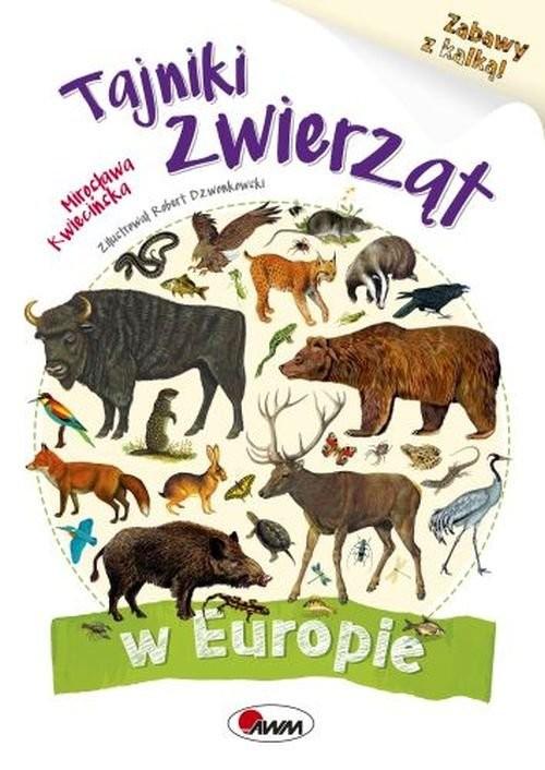 okładka Tajniki zwierząt w Europie Zabawy z kalką, Książka | Kwiecińska Mirosława
