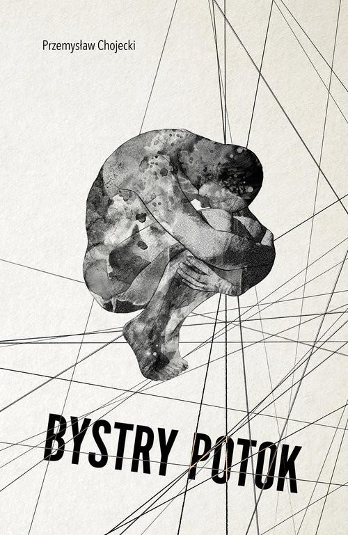 okładka Bystry potok, Książka   Przemysław  Chojecki