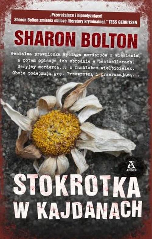 okładka Stokrotka w kajdanach, Książka   Bolton Sharon