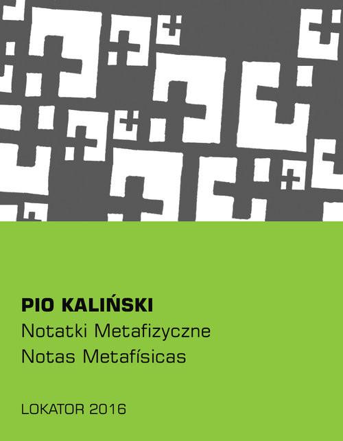 okładka Notatki metafizyczne, Książka | Kaliński Pio