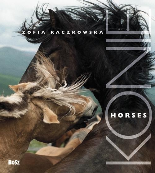 okładka Konie, Książka | Zofia Raczkowska, Marek Wajda, Pawelec-Zawadz