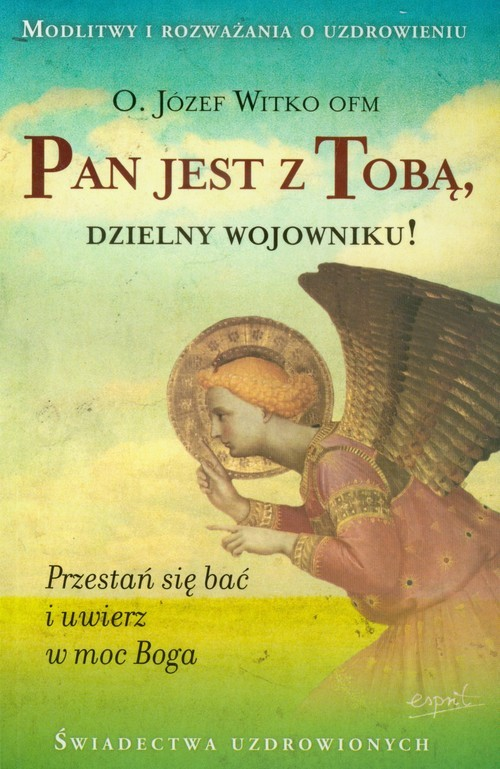 okładka Pan jest z Tobą dzielny wojowniku Przestań się bać i uwierz w moc Boga, Książka | Józef  Witko