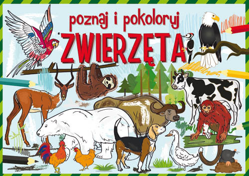 okładka Poznaj i pokoloruj zwierzęta, Książka | Krzysztof  Tonder