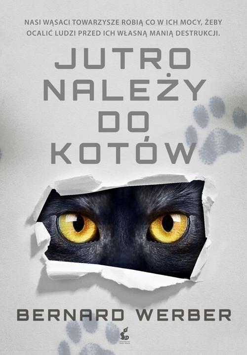 okładka Jutro należy do kotów, Książka | Werber Bernard