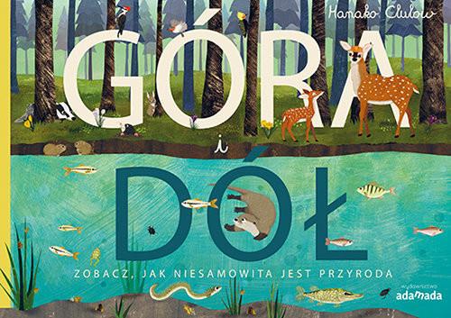 okładka Góra i dół Zobacz jak niesamowita jest przyroda, Książka | Patricia Hegarty, Tanera Simons