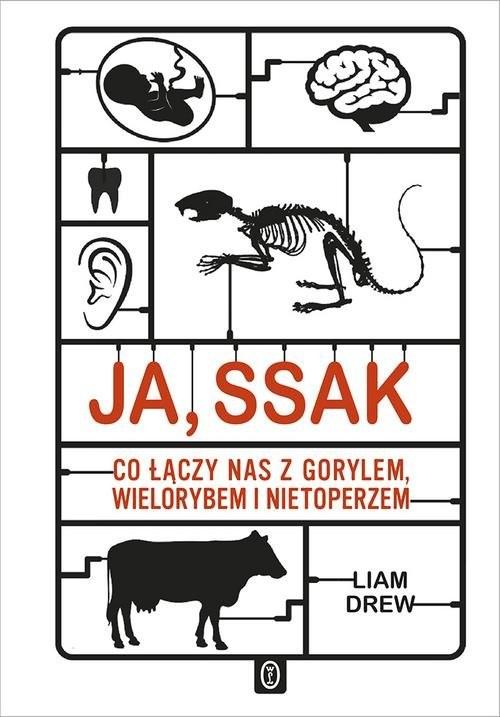 okładka Ja, ssak Co łączy nas z gorylem, wielorybem i nietoperzem, Książka | Drew Liam