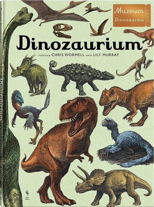 okładka Dinozaurium, Książka | Murray Lily