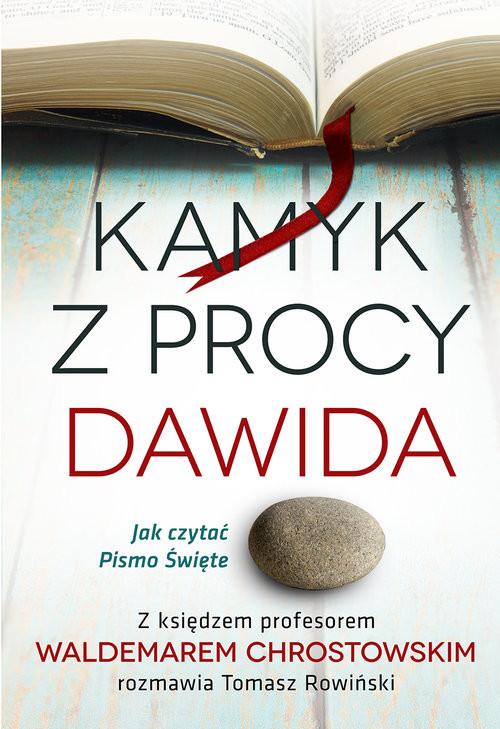 okładka Kamyk z procy Dawida Jak czytać Pismo Św., Książka | prof Waldemar Chrostowski, Tomasz Rowiński