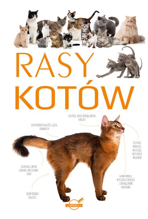 okładka Rasy kotów, Książka |